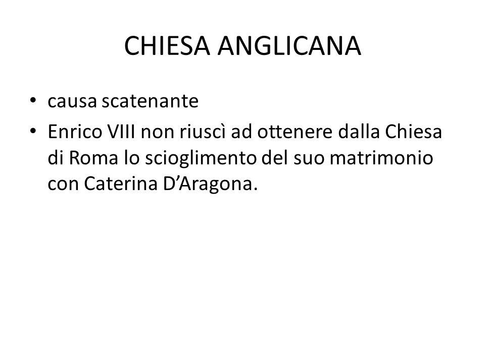 I 39 ARTICOLI XXIV.