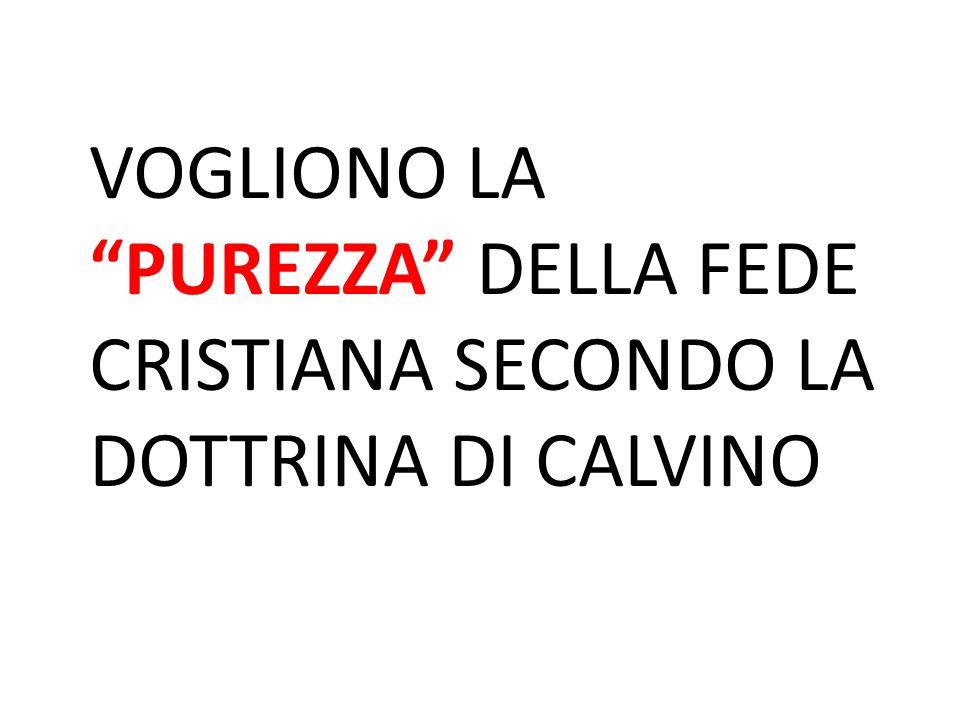 """VOGLIONO LA """"PUREZZA"""" DELLA FEDE CRISTIANA SECONDO LA DOTTRINA DI CALVINO"""