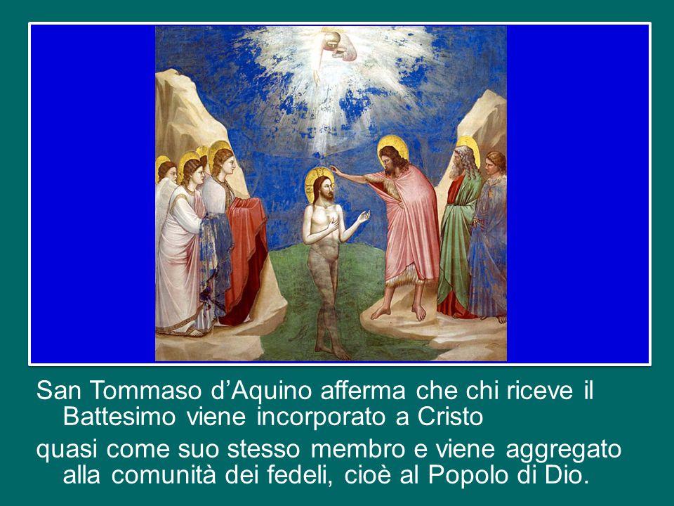 E sul Battesimo vorrei soffermarmi anche oggi, per sottolineare un frutto molto importante di questo Sacramento: esso ci fa diventare membri del Corpo di Cristo e del Popolo di Dio.