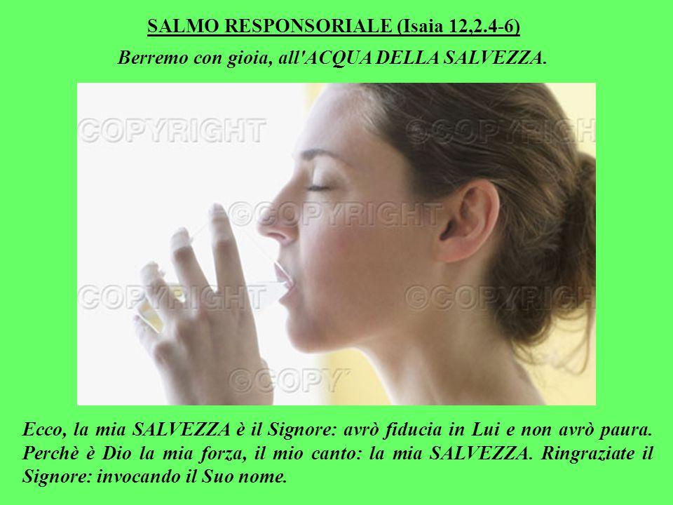 SALMO RESPONSORIALE (Isaia 12,2.4-6) Berremo con gioia, all ACQUA DELLA SALVEZZA.