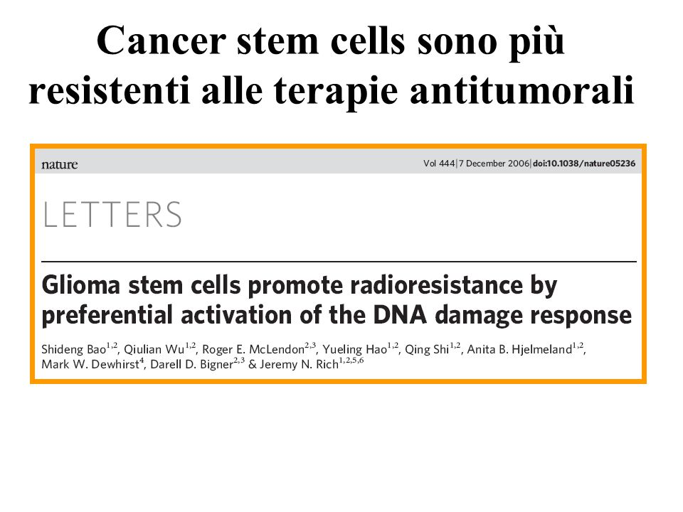 Cancer stem cells sono più resistenti alle terapie antitumorali