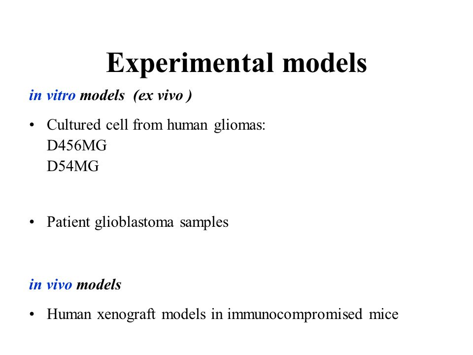 Experimental models in vitro models (ex vivo ) Cultured cell from human gliomas: D456MG D54MG Patient glioblastoma samples in vivo models Human xenogr