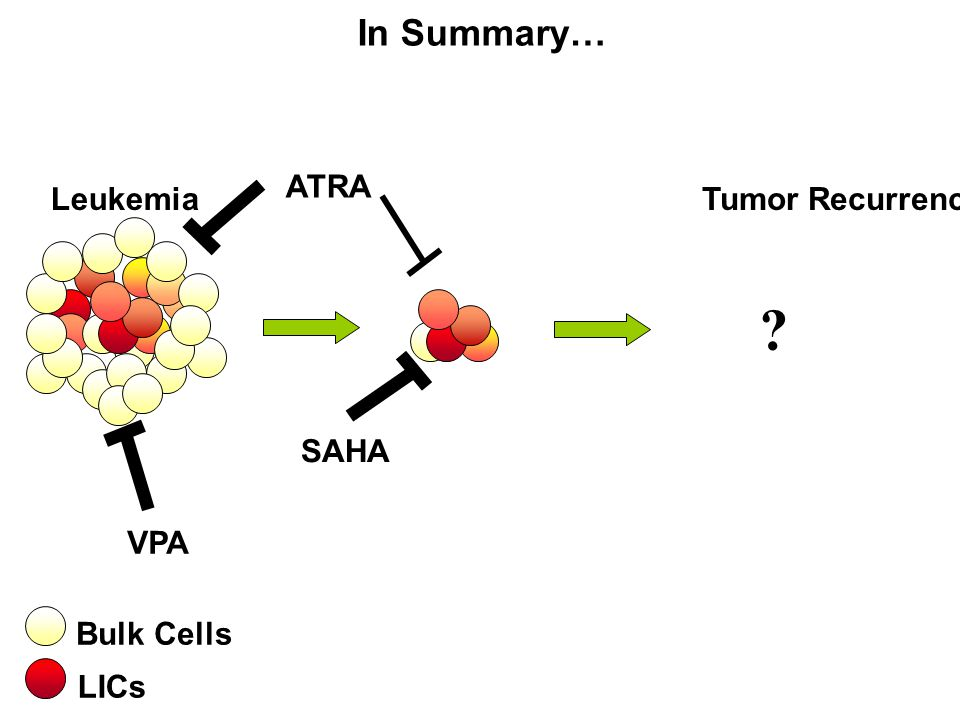 LeukemiaTumor Recurrence VPA SAHA LICs Bulk Cells ATRA In Summary… ?