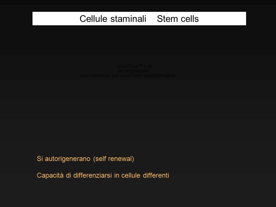 Si autorigenerano (self renewal) Capacità di differenziarsi in cellule differenti Cellule staminali Stem cells