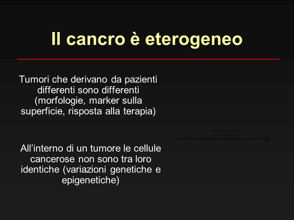 Il cancro è eterogeneo Tumori che derivano da pazienti differenti sono differenti (morfologie, marker sulla superficie, risposta alla terapia) All'int