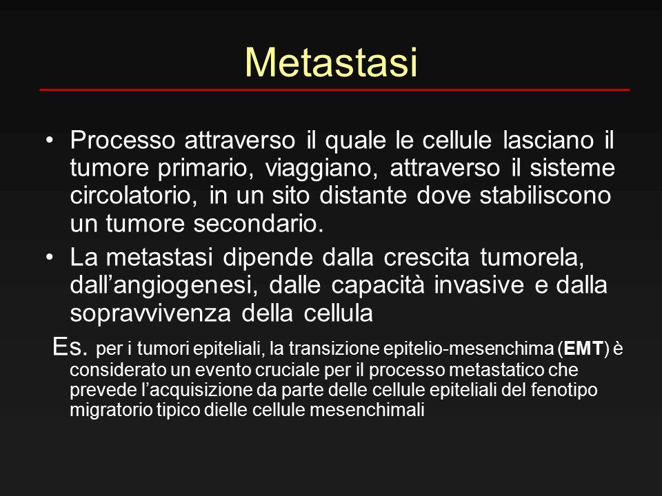 Metastasi Processo attraverso il quale le cellule lasciano il tumore primario, viaggiano, attraverso il sisteme circolatorio, in un sito distante dove