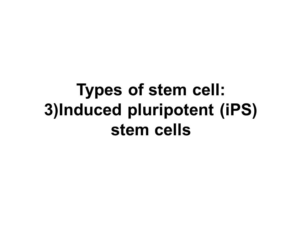 Types of stem cell: 3)Induced pluripotent (iPS) stem cells