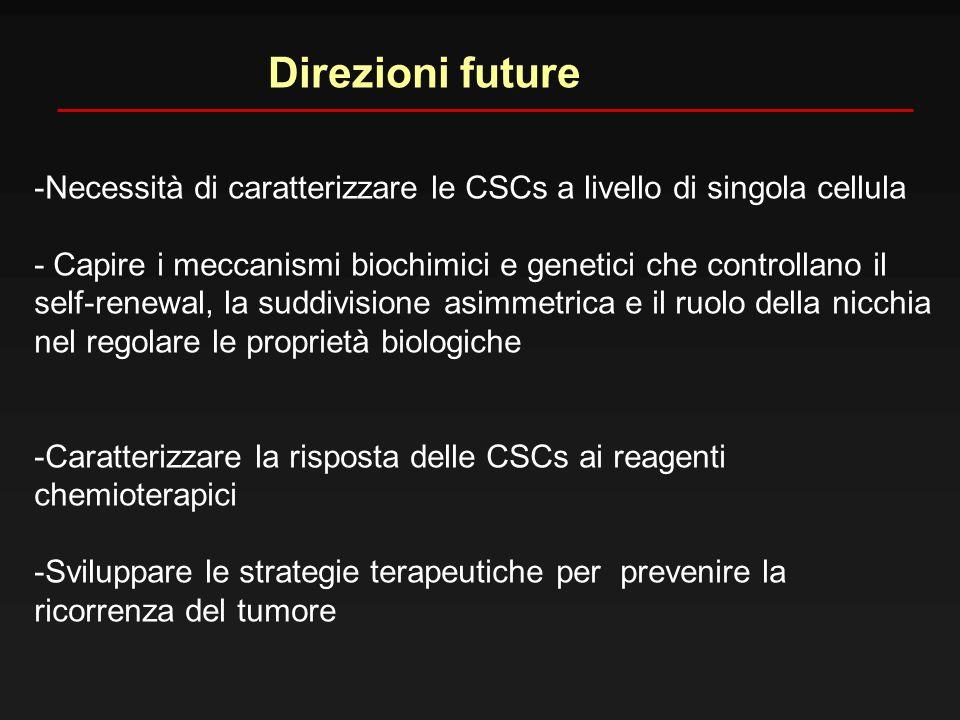 Direzioni future -Necessità di caratterizzare le CSCs a livello di singola cellula - Capire i meccanismi biochimici e genetici che controllano il self
