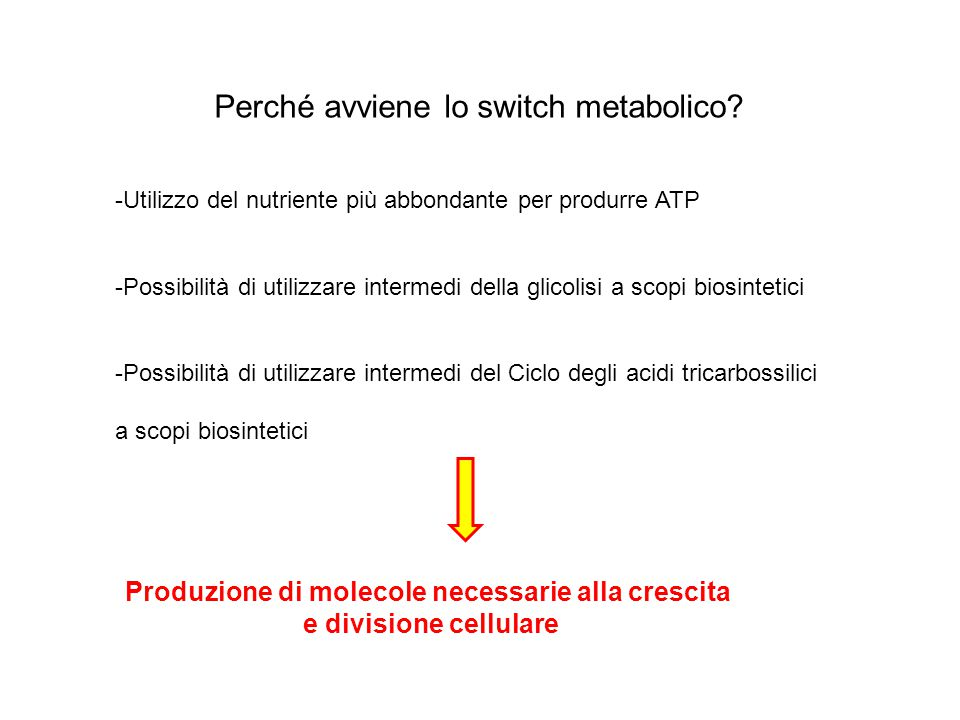 Metabolismo glucosio La velocità della glicolisi è aumentata di circa 10 volte in cellule tumorali.