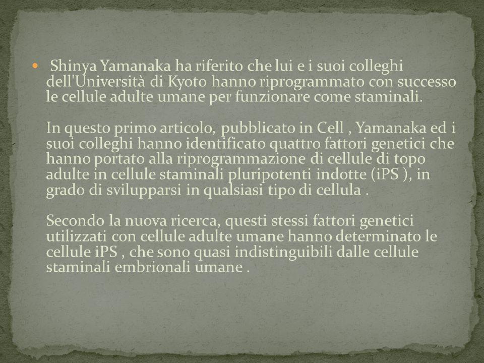 Shinya Yamanaka ha riferito che lui e i suoi colleghi dell'Università di Kyoto hanno riprogrammato con successo le cellule adulte umane per funzionare