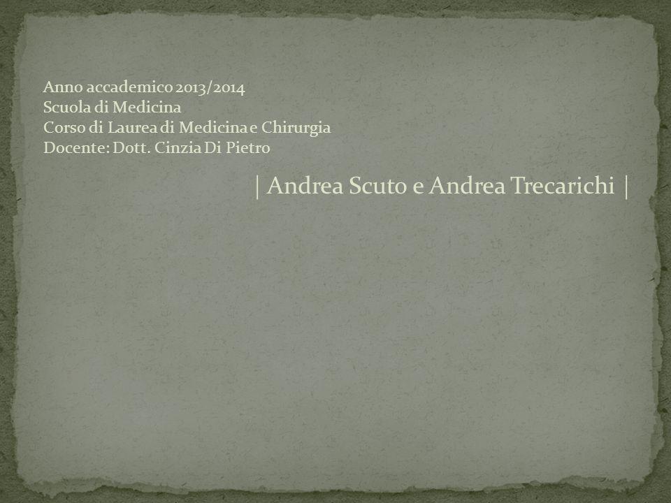 | Andrea Scuto e Andrea Trecarichi | Anno accademico 2013/2014 Scuola di Medicina Corso di Laurea di Medicina e Chirurgia Docente: Dott. Cinzia Di Pie