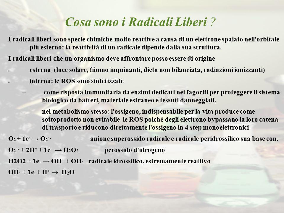 Cosa sono i Radicali Liberi ? I radicali liberi sono specie chimiche molto reattive a causa di un elettrone spaiato nell'orbitale più esterno: la reat