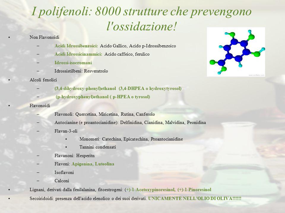 I polifenoli: 8000 strutture che prevengono l'ossidazione! Non Flavonoidi –Acidi Idrossibenzoici: Acido Gallico, Acido p-Idrossibenzoico –Acidi Idross
