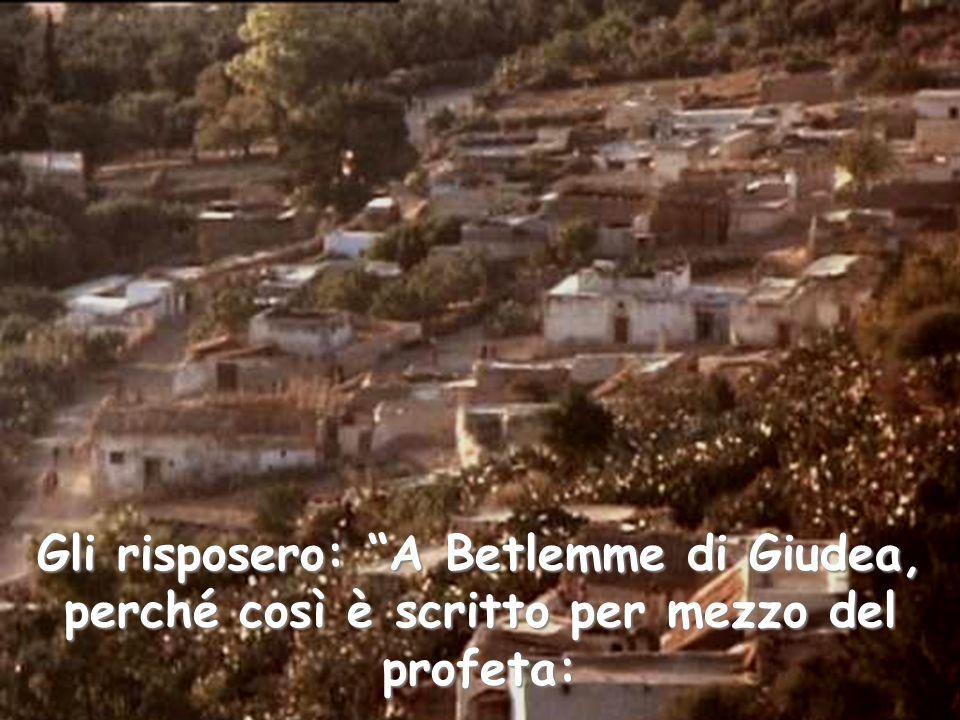 """Gli risposero: """"A Betlemme di Giudea, perché così è scritto per mezzo del profeta:"""