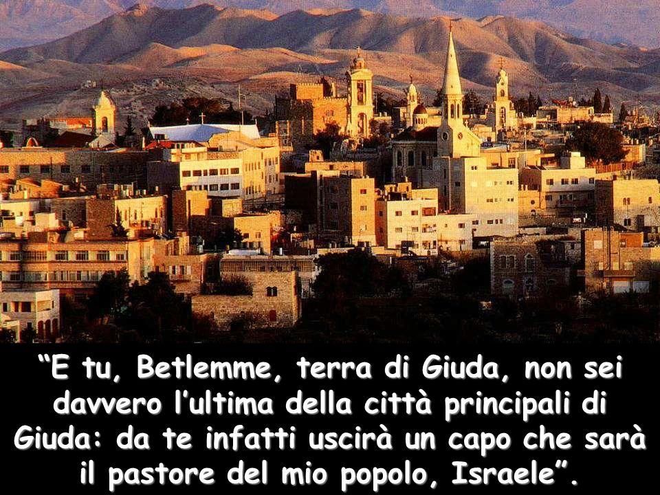 """""""E tu, Betlemme, terra di Giuda, non sei davvero l'ultima della città principali di Giuda: da te infatti uscirà un capo che sarà il pastore del mio po"""
