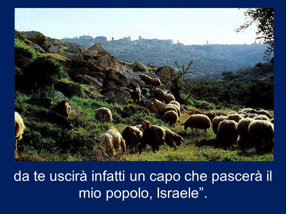 """""""E tu, Betlemme, terra di Giuda, non sei davvero il più piccolo capoluogo di Giuda:"""
