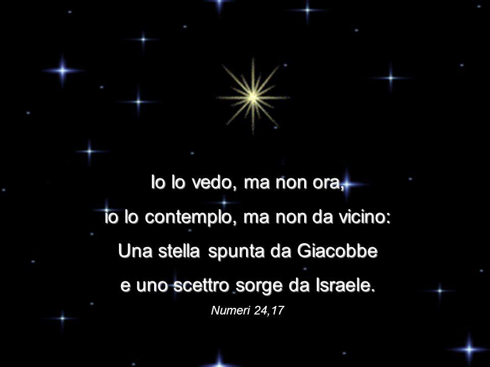 Io lo vedo, ma non ora, io lo contemplo, ma non da vicino: Una stella spunta da Giacobbe e uno scettro sorge da Israele.