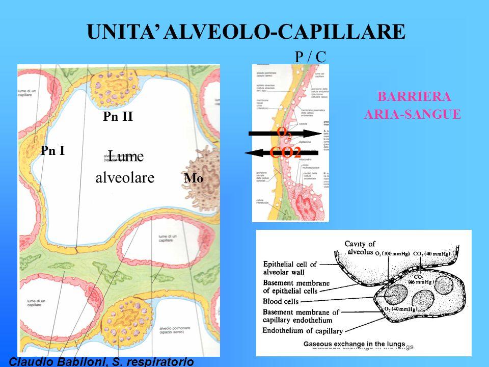 Claudio Babiloni, S. respiratorio UNITA' ALVEOLO-CAPILLARE BARRIERA ARIA-SANGUE Mo Pn II Pn I Lume alveolare P / C CO2 O2O2