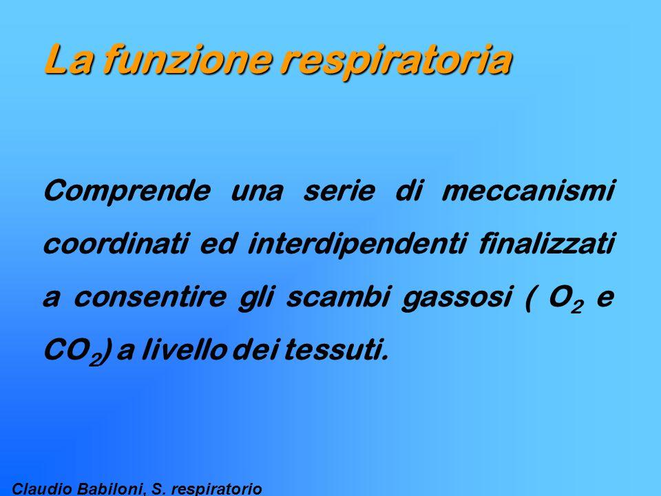 Claudio Babiloni, S. respiratorio La funzione respiratoria Comprende una serie di meccanismi coordinati ed interdipendenti finalizzati a consentire gl