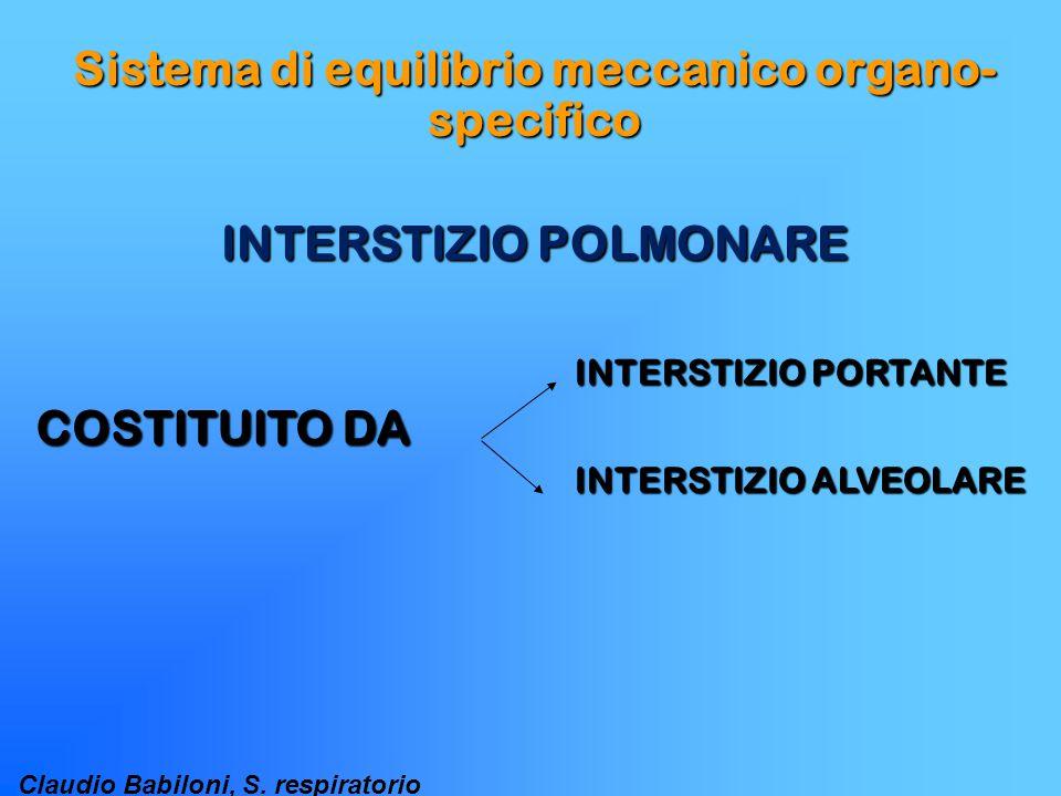 Claudio Babiloni, S. respiratorio Sistema di equilibrio meccanico organo- specifico INTERSTIZIO POLMONARE COSTITUITO DA INTERSTIZIO PORTANTE INTERSTIZ