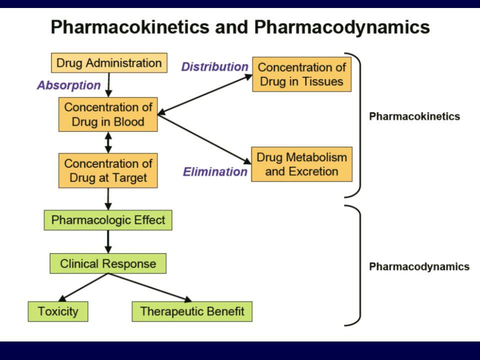 La velocità di assorbimento determina il picco plasmatico ed il tempo necessario per raggiungerlo Un farmaco viene somministrato in due muscoli con irrorazione diversa.