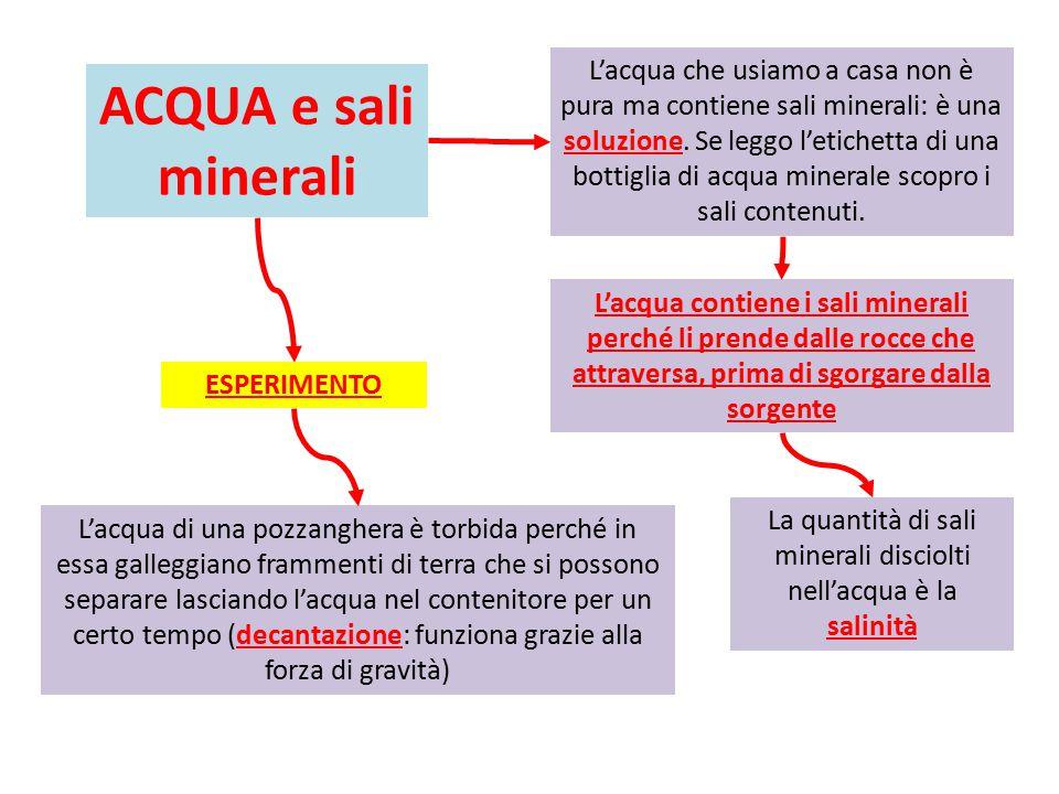 ACQUA e sali minerali L'acqua contiene i sali minerali perché li prende dalle rocce che attraversa, prima di sgorgare dalla sorgente L'acqua di una pozzanghera è torbida perché in essa galleggiano frammenti di terra che si possono separare lasciando l'acqua nel contenitore per un certo tempo (decantazione: funziona grazie alla forza di gravità) L'acqua che usiamo a casa non è pura ma contiene sali minerali: è una soluzione.