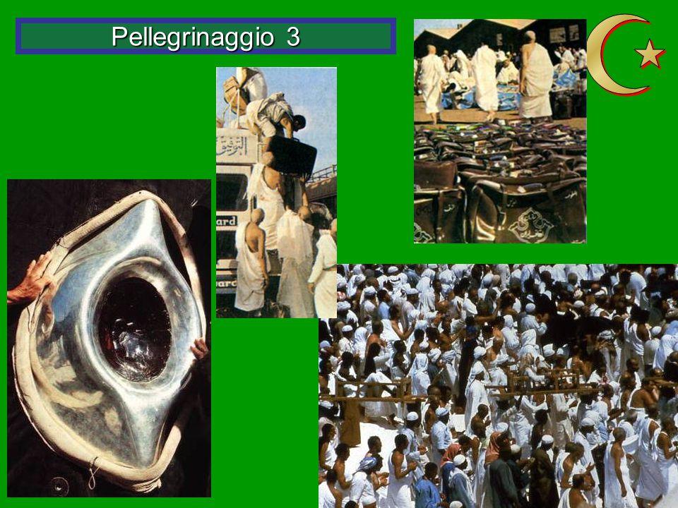 Pellegrinaggio 3