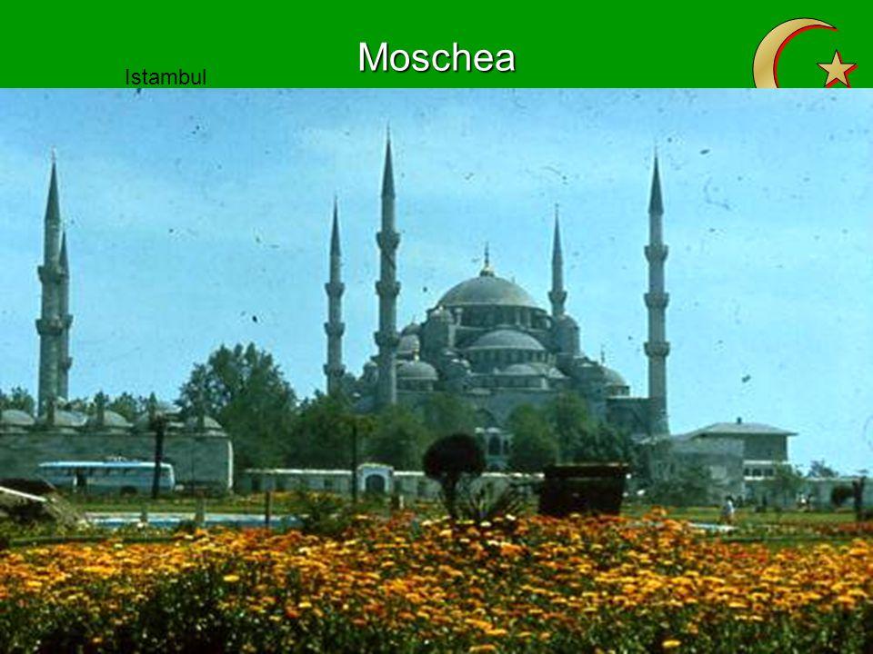 Moschea Istambul