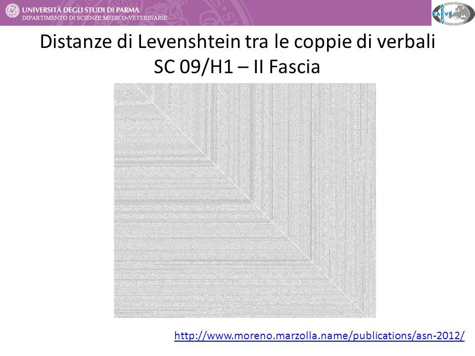 Distanze di Levenshtein tra le coppie di verbali SC 09/H1 – II Fascia http://www.moreno.marzolla.name/publications/asn-2012/