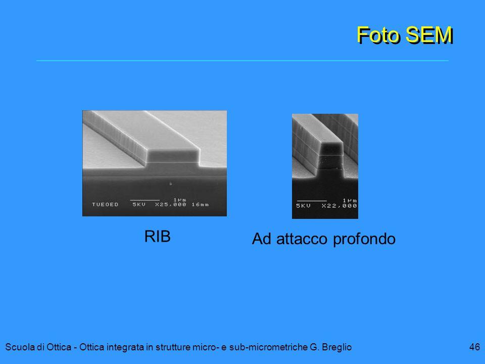 46 RIB Ad attacco profondo Scuola di Ottica - Ottica integrata in strutture micro- e sub-micrometriche G. Breglio Foto SEM