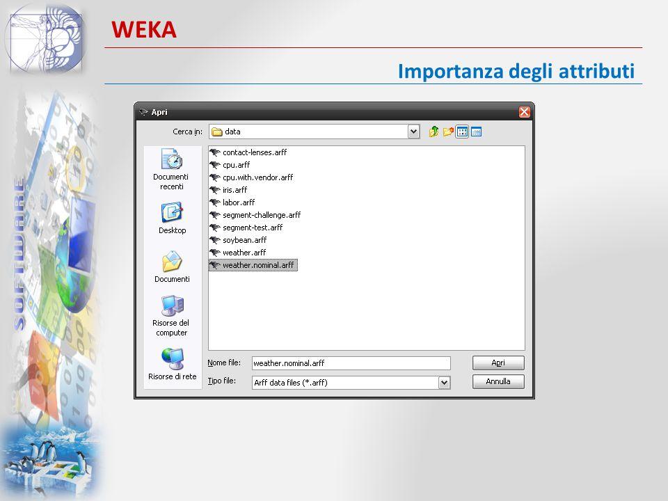 Importanza degli attributi WEKA