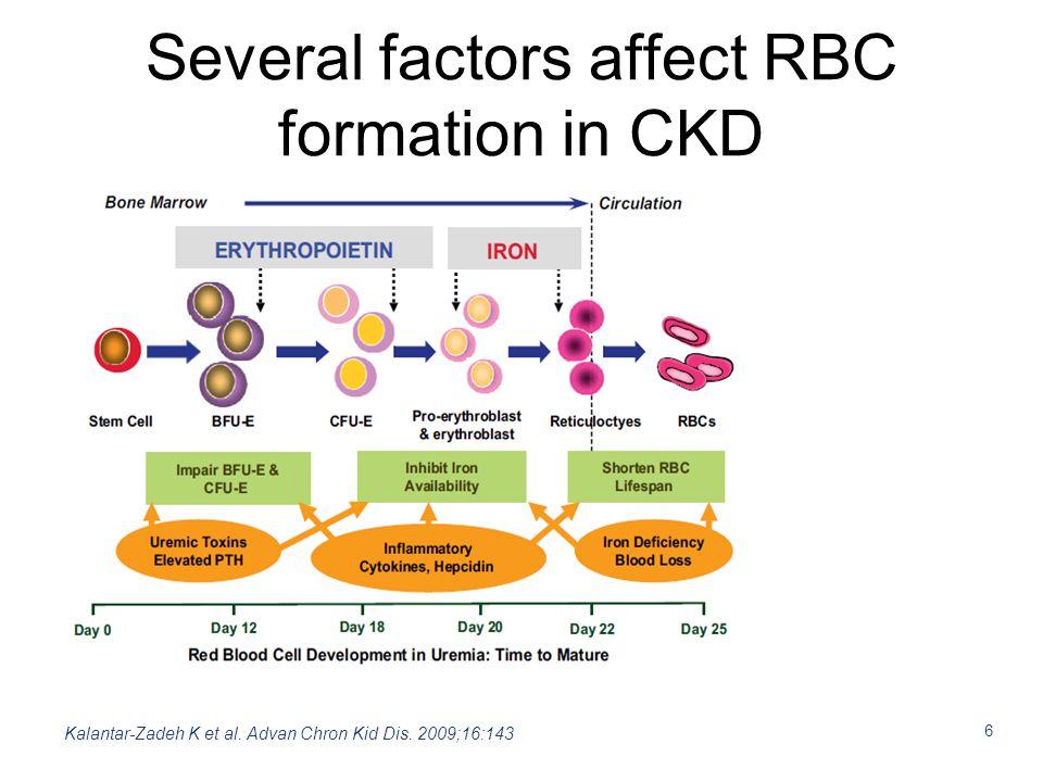 6 Several factors affect RBC formation in CKD Kalantar-Zadeh K et al. Advan Chron Kid Dis. 2009;16:143
