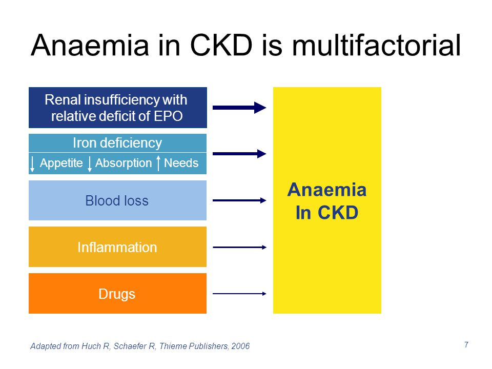 7 Anaemia in CKD is multifactorial Anaemia In CKD Blood loss Inflammation Renal insufficiency with relative deficit of EPO Drugs Appetite Absorption N