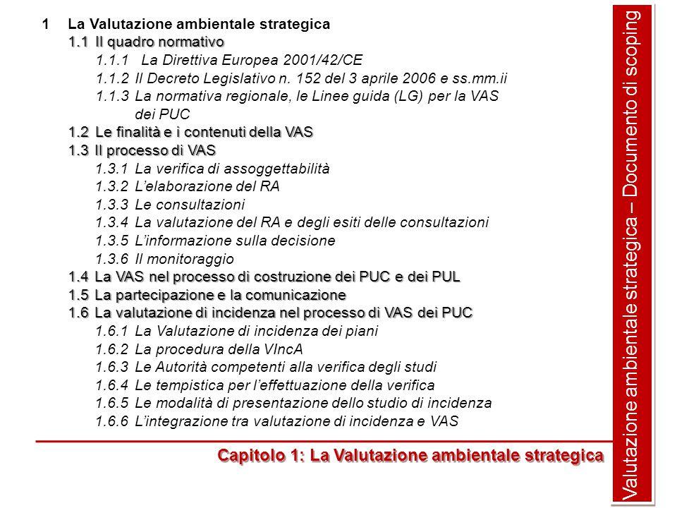 Valutazione ambientale strategica – Documento di scoping 1La Valutazione ambientale strategica 1.1Il quadro normativo 1.1.1 La Direttiva Europea 2001/42/CE 1.1.2Il Decreto Legislativo n.