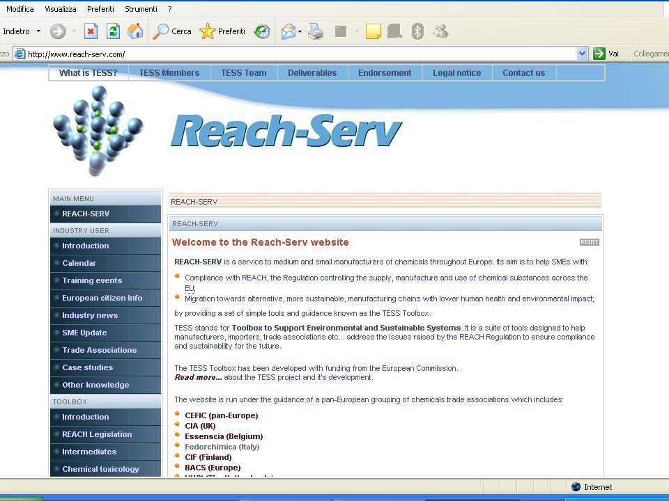 www.reach-serv.com