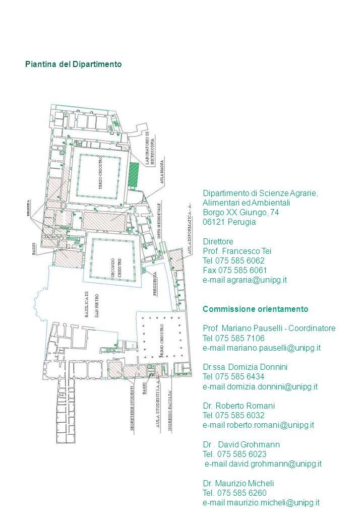 Piantina del Dipartimento Dipartimento di Scienze Agrarie, Alimentari ed Ambientali Borgo XX Giungo, 74 06121 Perugia Direttore Prof.