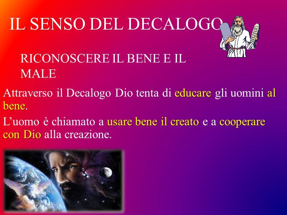 IL SENSO DEL DECALOGO educareal bene Attraverso il Decalogo Dio tenta di educare gli uomini al bene. usare bene il creato cooperare con Dio L'uomo è c
