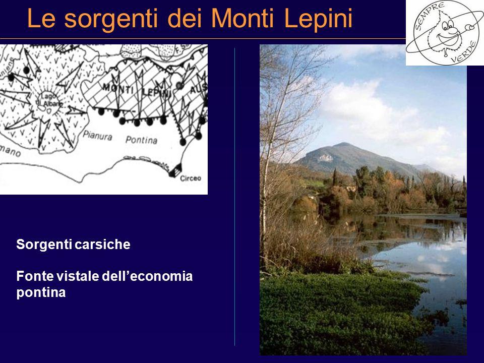 Le sorgenti dei Monti Lepini Sorgenti carsiche Fonte vistale dell'economia pontina