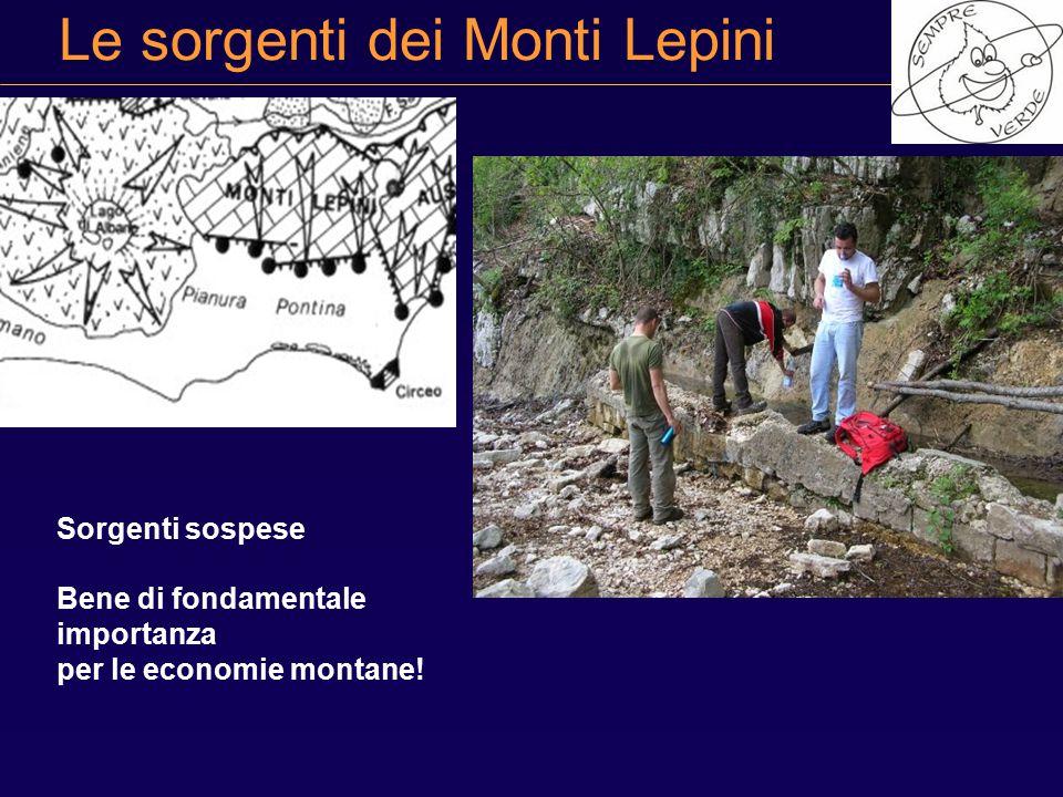 Le sorgenti dei Monti Lepini Sorgenti sospese Bene di fondamentale importanza per le economie montane!