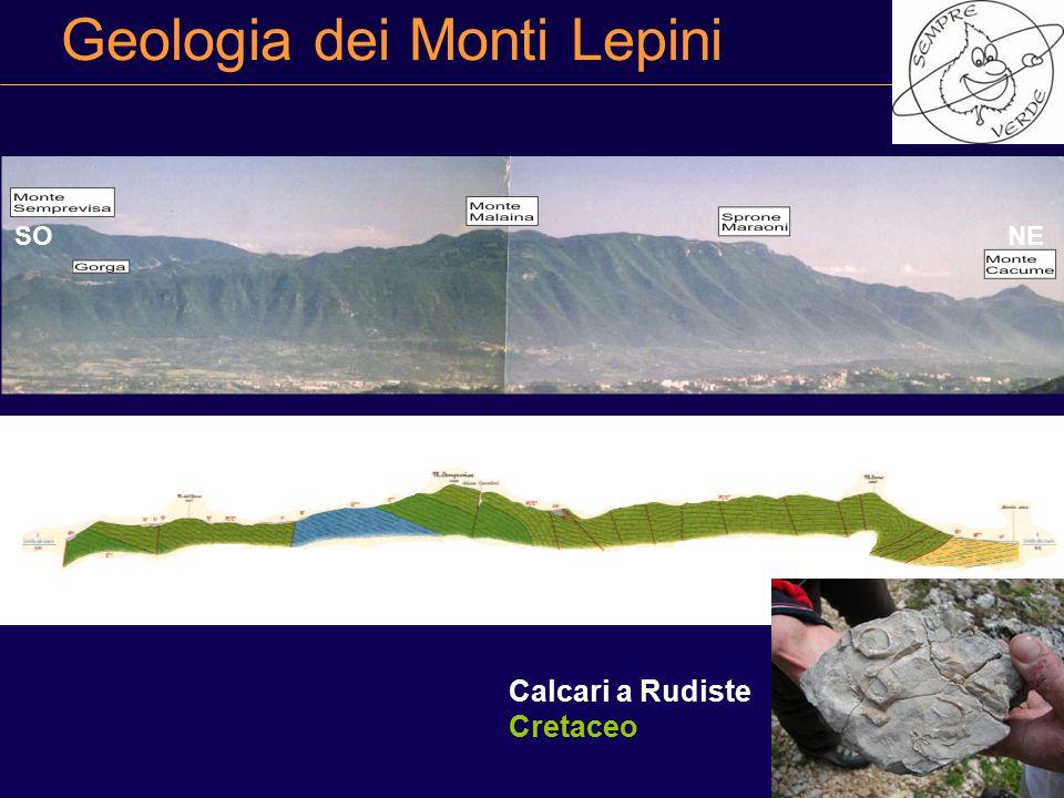 Geologia dei Monti Lepini Calcari a Rudiste Cretaceo NESO