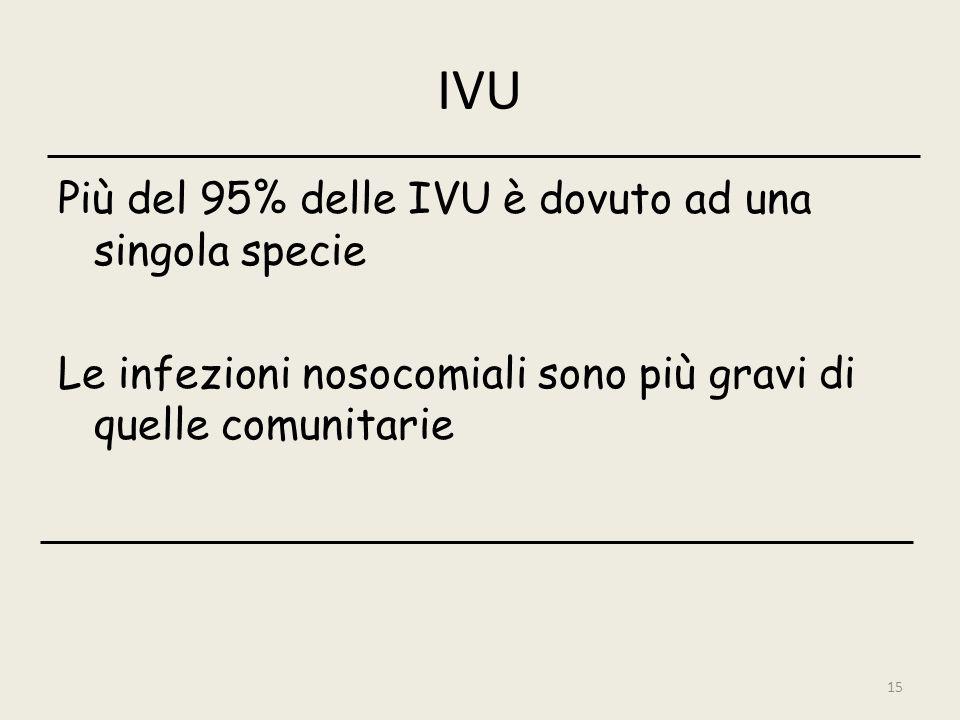 15 IVU Più del 95% delle IVU è dovuto ad una singola specie Le infezioni nosocomiali sono più gravi di quelle comunitarie