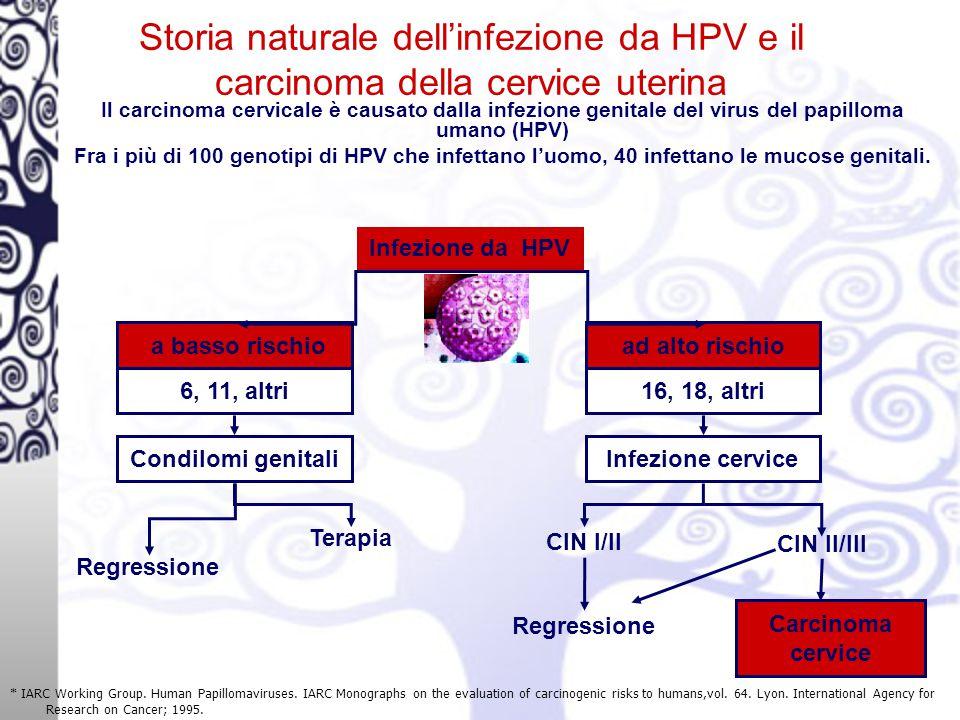 Storia naturale dell'infezione da HPV e il carcinoma della cervice uterina * IARC Working Group.