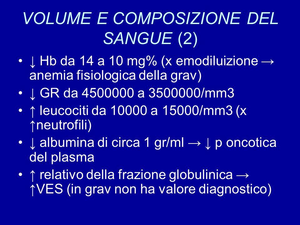 VOLUME E COMPOSIZIONE DEL SANGUE (2) ↓ Hb da 14 a 10 mg% (x emodiluizione → anemia fisiologica della grav) ↓ GR da 4500000 a 3500000/mm3 ↑ leucociti d