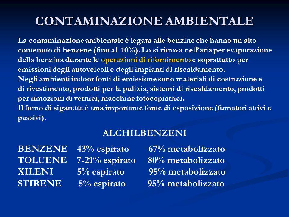 CONTAMINAZIONE AMBIENTALE La contaminazione ambientale è legata alle benzine che hanno un alto contenuto di benzene (fino al 10%).