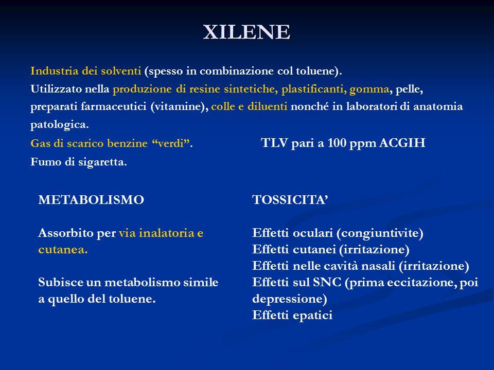 XILENE Industria dei solventi (spesso in combinazione col toluene).