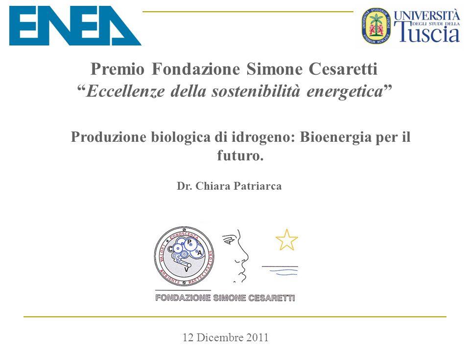 """12 Dicembre 2011 Premio Fondazione Simone Cesaretti """"Eccellenze della sostenibilità energetica"""" Produzione biologica di idrogeno: Bioenergia per il fu"""