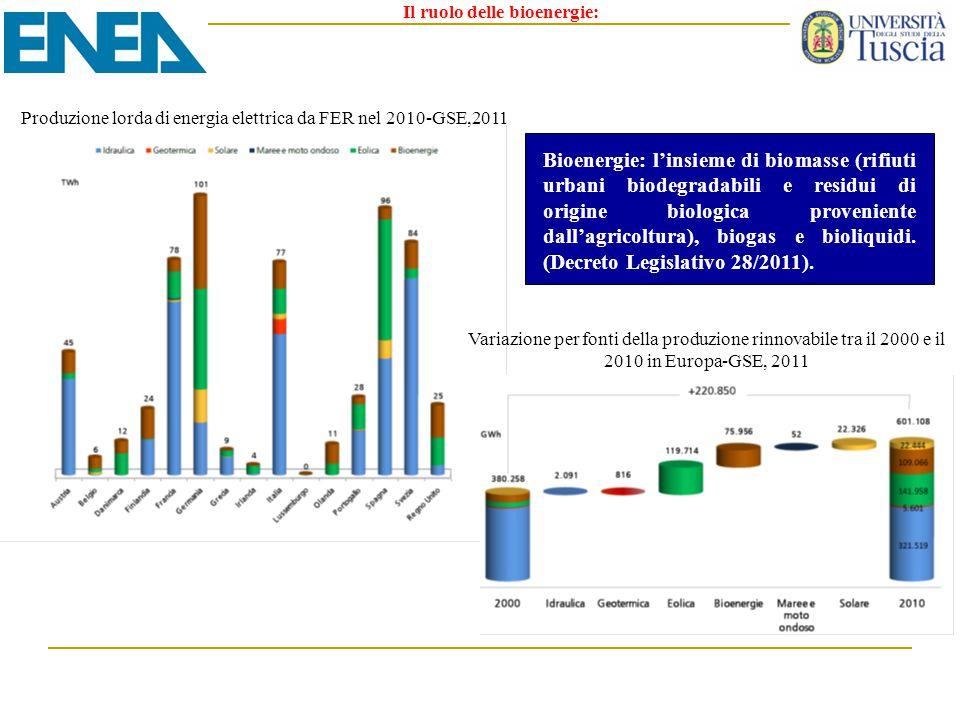 Il ruolo delle bioenergie: Produzione lorda di energia elettrica da FER nel 2010-GSE,2011 Variazione per fonti della produzione rinnovabile tra il 200