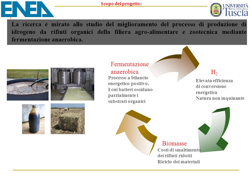 Scopo del progetto: La ricerca è mirato allo studio del miglioramento del processo di produzione di idrogeno da rifiuti organici della filiera agro-al