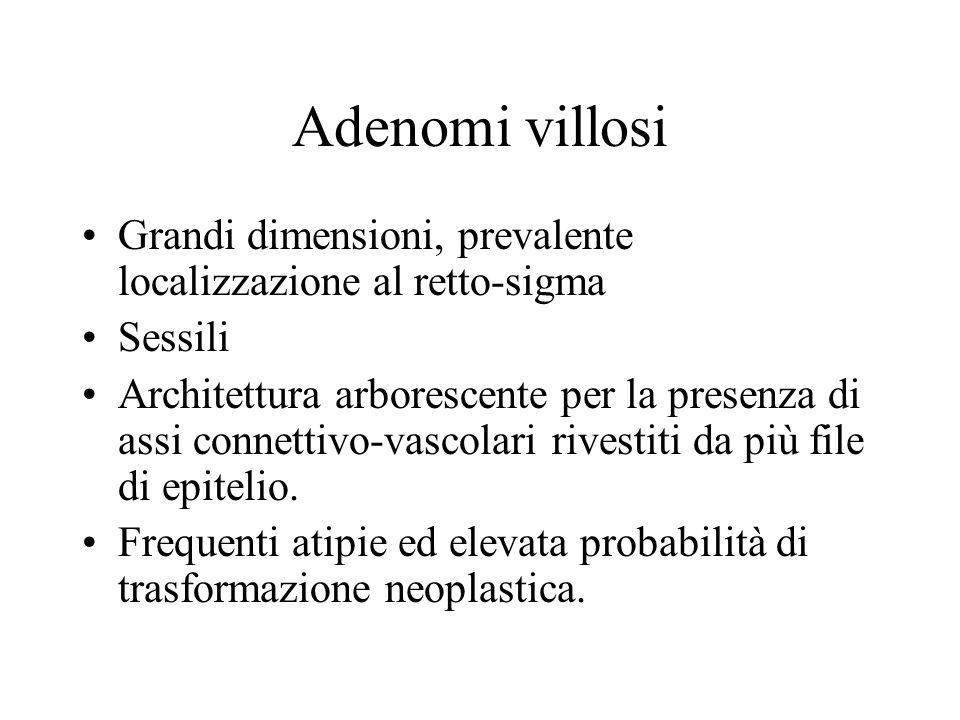 Adenomi villosi Grandi dimensioni, prevalente localizzazione al retto-sigma Sessili Architettura arborescente per la presenza di assi connettivo-vasco