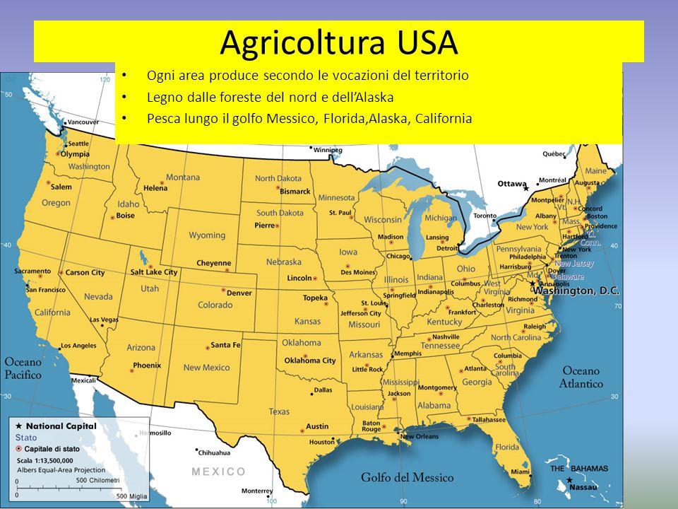 Agricoltura USA Ogni area produce secondo le vocazioni del territorio Legno dalle foreste del nord e dell'Alaska Pesca lungo il golfo Messico, Florida,Alaska, California